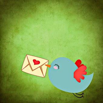 carta de amor a mi novia