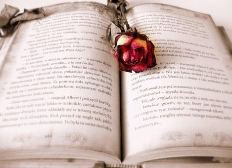 ideas para cartas de amor